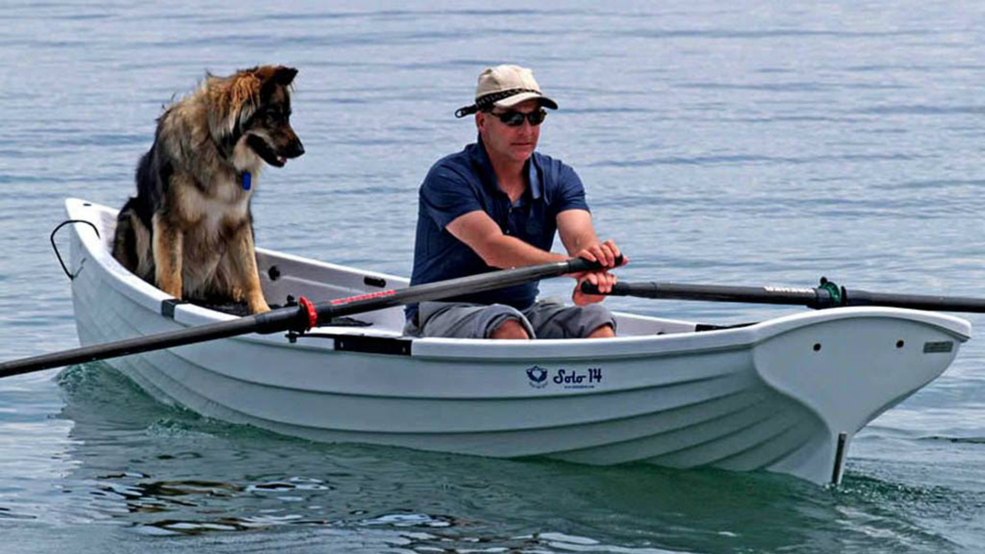 Whitehall-Solo-Row-Rowing-Dogs-Water-Outdoors